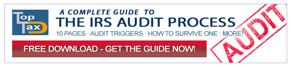 audit ebook