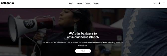 patagonia-activism-page