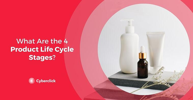 What Are the 4 Product Life Cycle Stages?