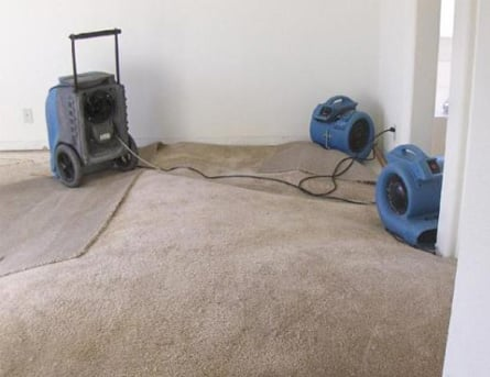 FloorPartners drying wet carpet
