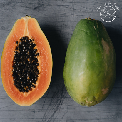 Papaya Trees Helping The Fight Against Hunger