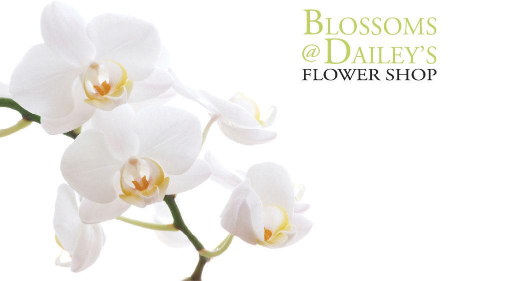 B2B | Florist