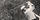 Spirit of the Game: Althea Gibson, a Multi-Talented Star