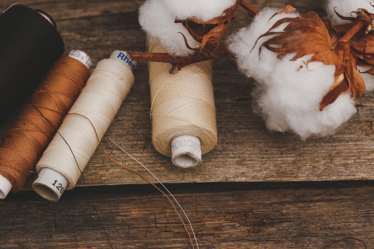 Fashion's Eco-friendly Cotton Alternatives | MakersValley Blog