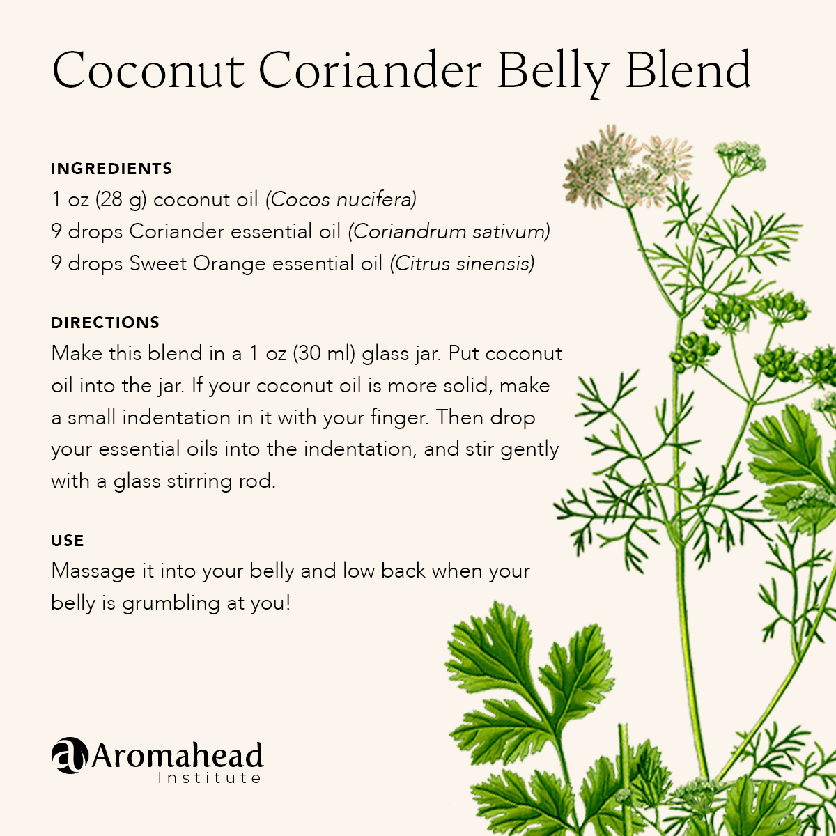 Coconut Coriander Belly Blend
