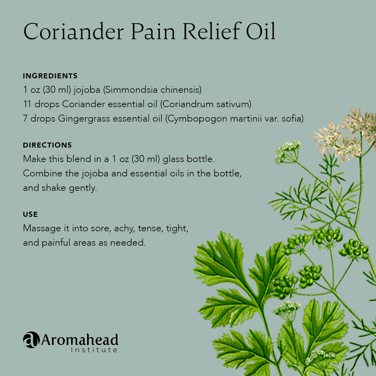 Coriander Pain Relief Oil