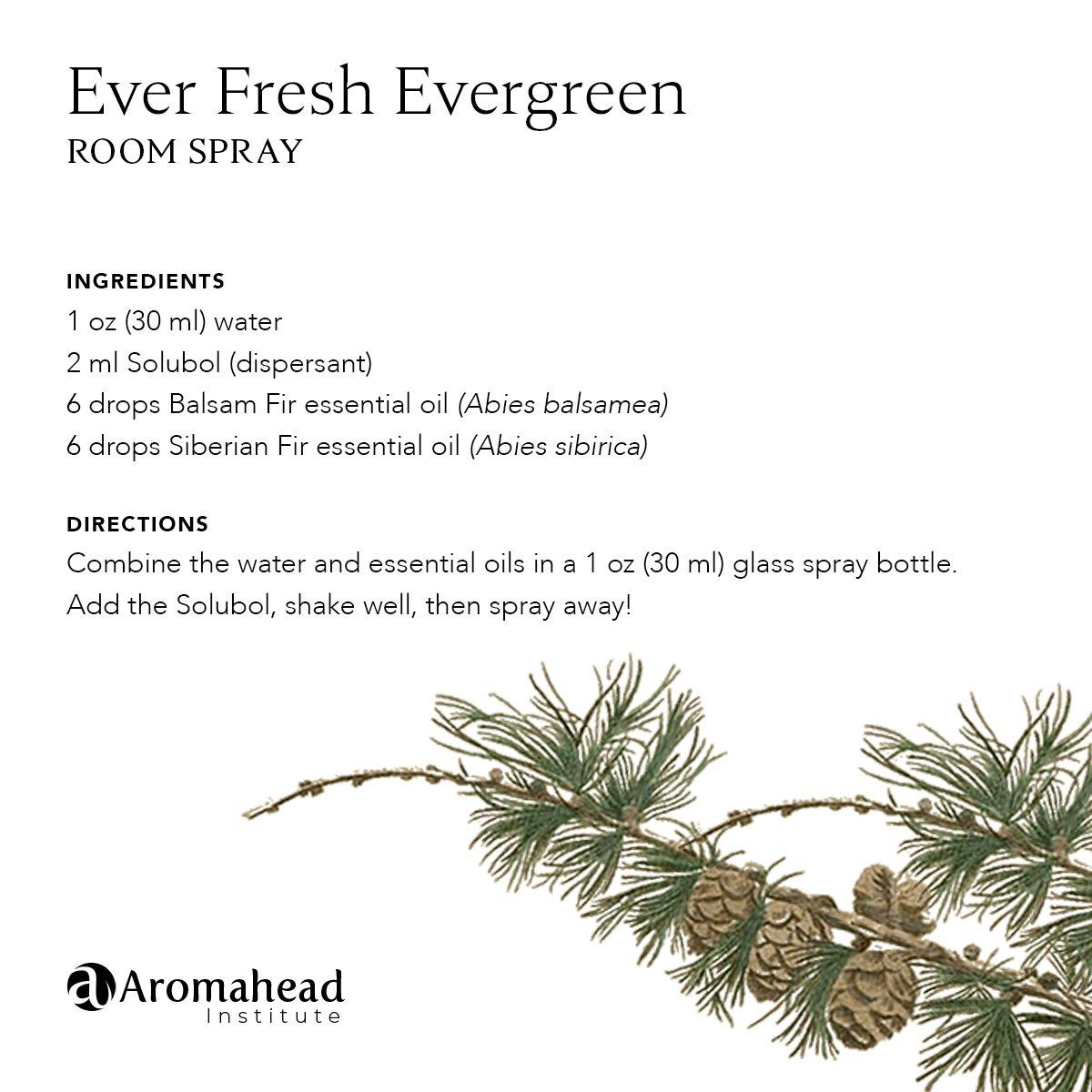 Ever Fresh Evergreen Room Spray