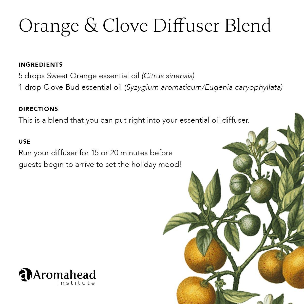 Orange Clove Diffuser Blend