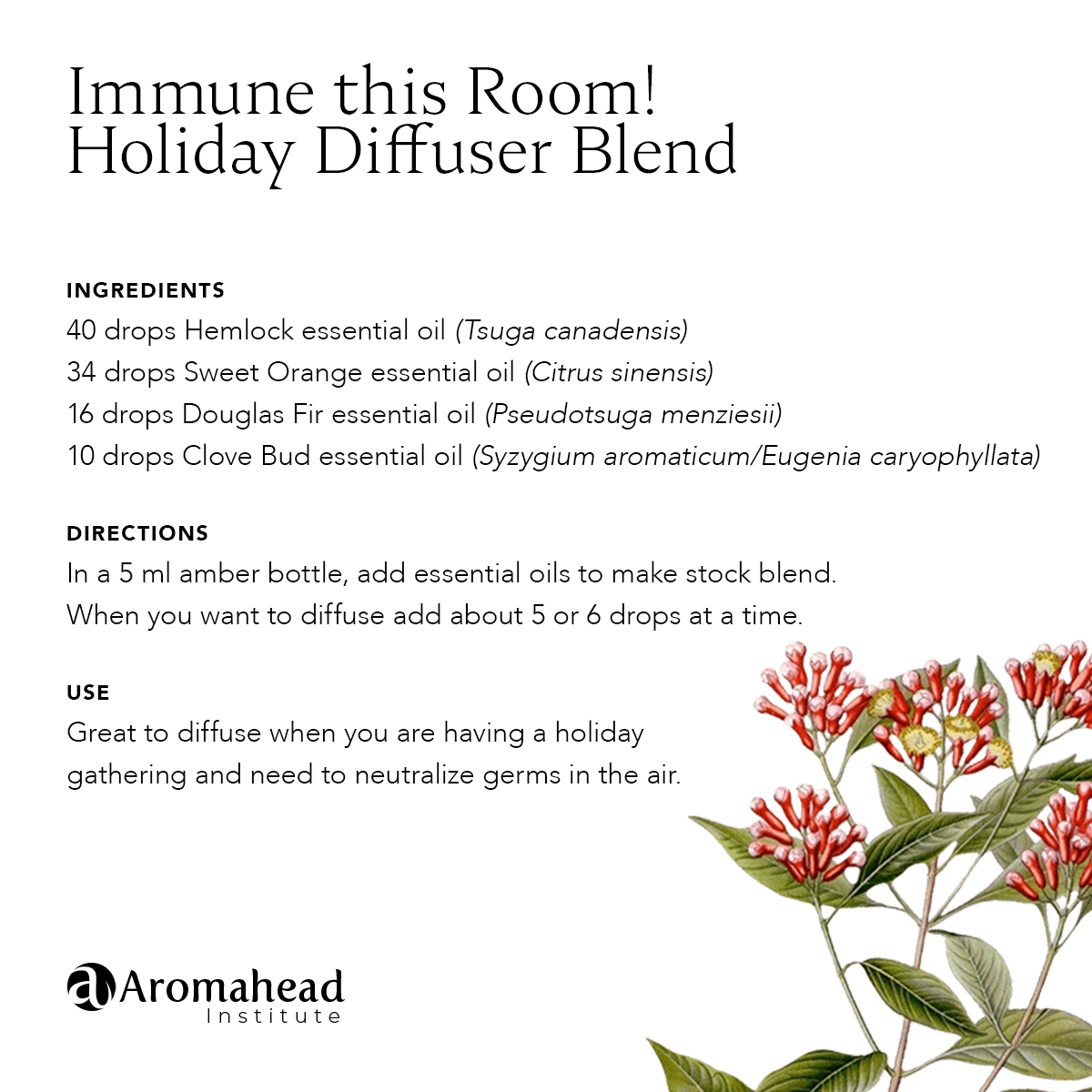 Immune This Room Holiday Diffuser Blend