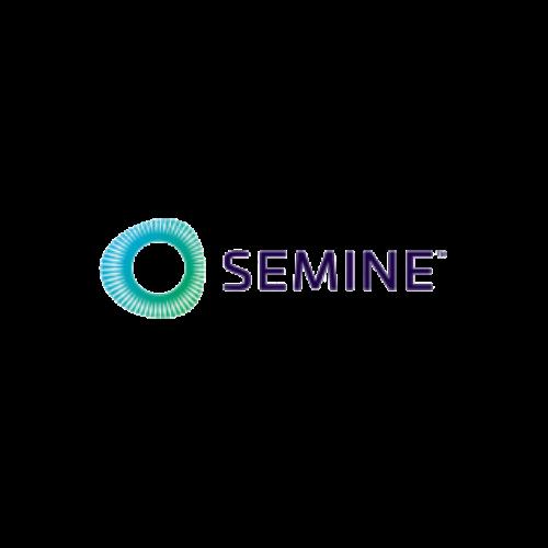 Semine final