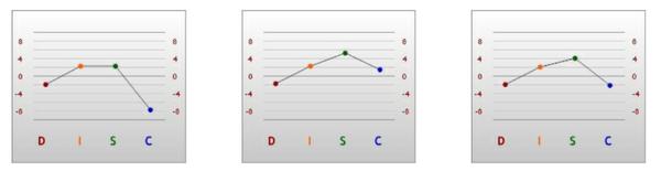 Sara DISC Graph