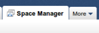 Space Manager tab