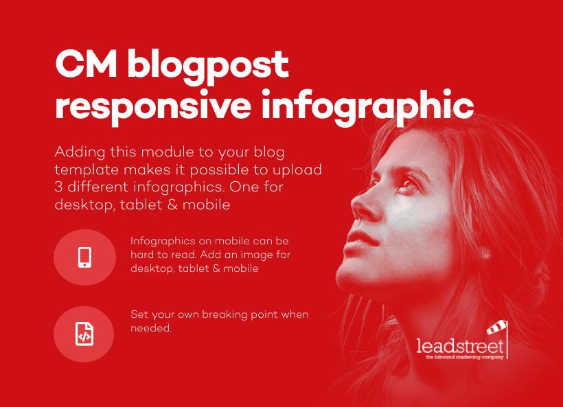 Blogpost Responsive Infographic
