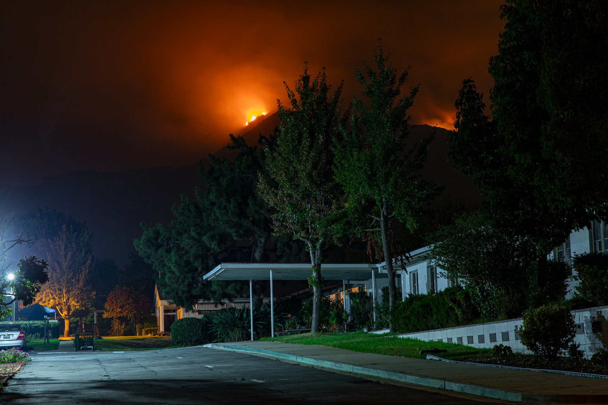 california bobcat wildfire