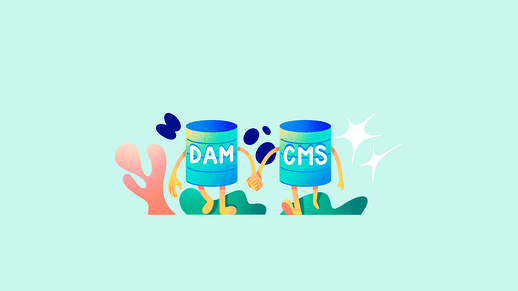 A DAM system and a CMS hand in hand