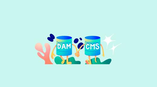 Sistema DAM y CMS