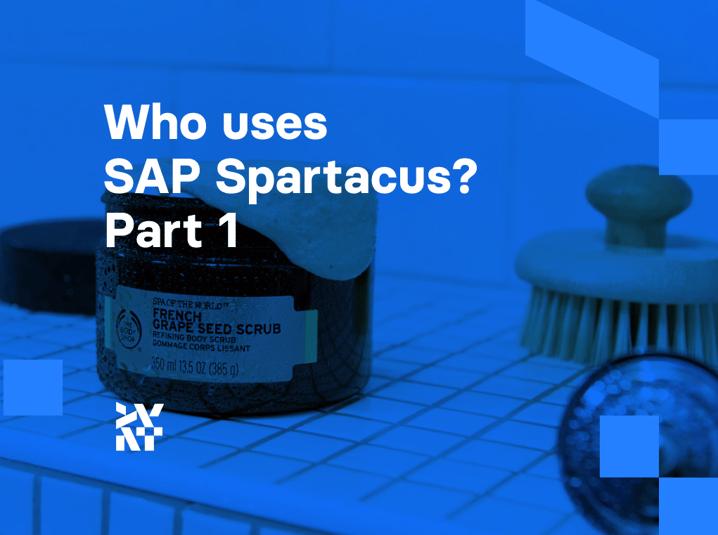 Who uses SAP Spartacus? Part 1 | Divante eCommerce Technology