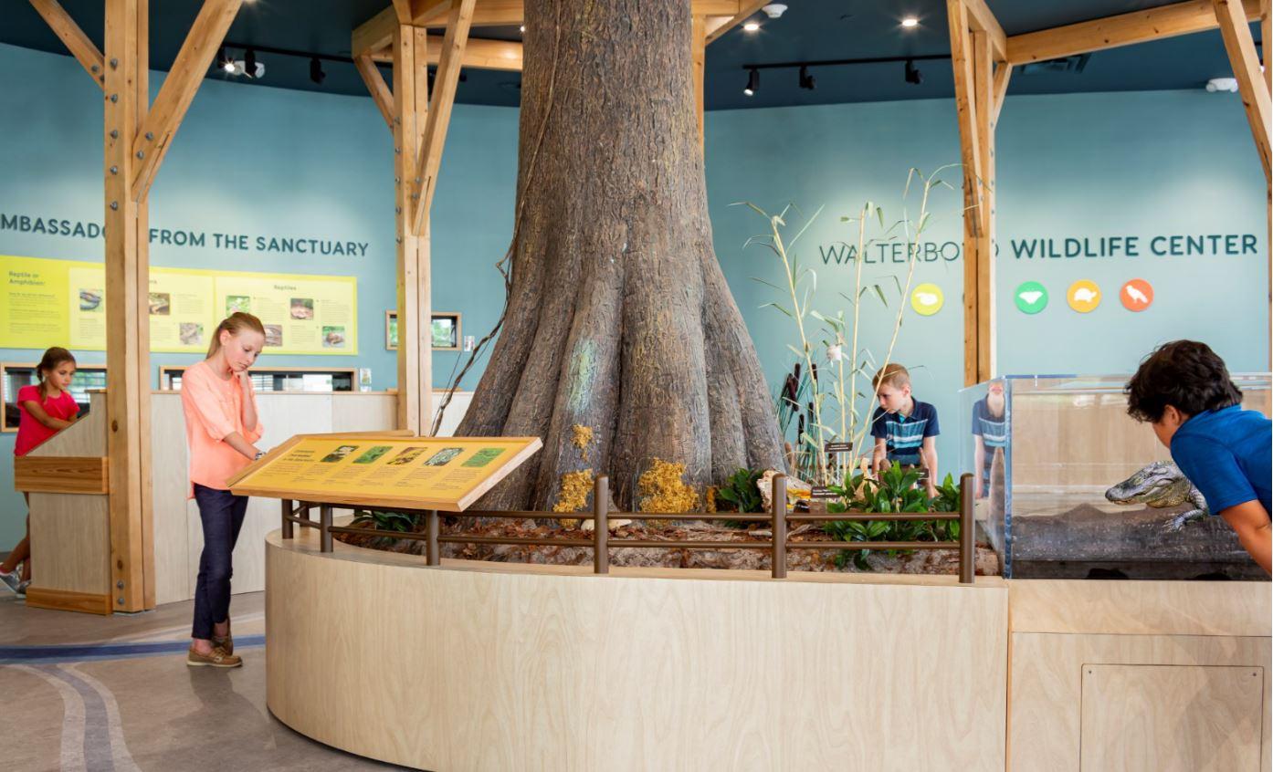 Walterboro Wildlife Center Complete and Open for Socially-Distanced Visits!