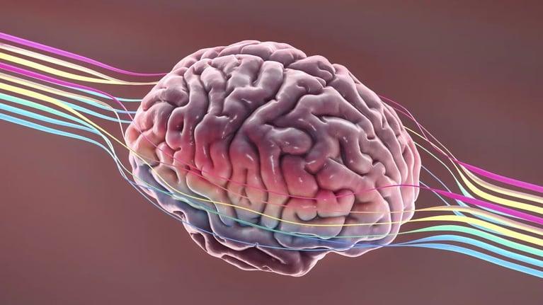 The Secret to Rewiring a Smarter Brain