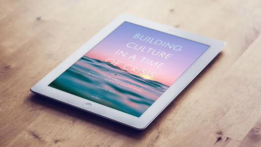 Building Culture in a Time of Crisis [E-Book]