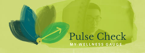 Pulse Check - My Wellness Gauge