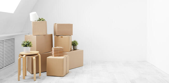 Planning Your Move abroad: Forward Contracts