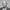 Qiping-Sun_website