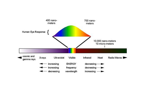 What is UV-C Disinfection Lighting: The Basics