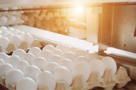 Food Processing Lighting: Food & Beverage Lighting E-Book