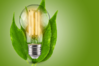 Luminous Efficacy (Lighting Efficiency) and the Power of