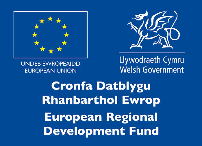 'DR.VR R&D supported by Smart Cymru