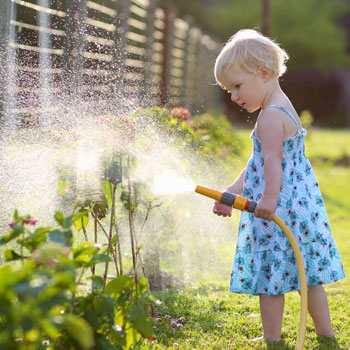 Top 10 Tips For Watering your landscape