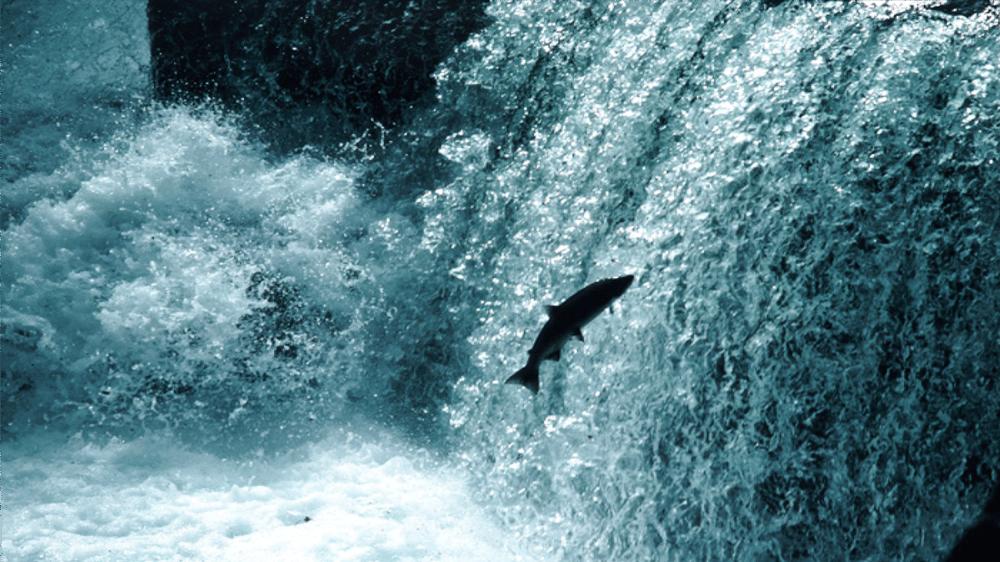 upstream_image