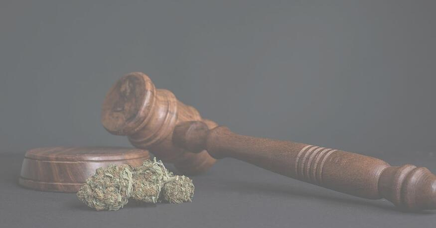 4 Key Changes the Proposed MORE Act Mean for the Cannabis Industry