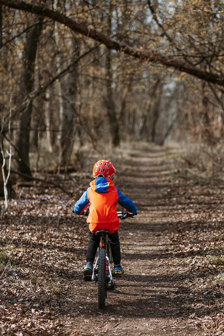 Kid with woom Mountainbike in the woods