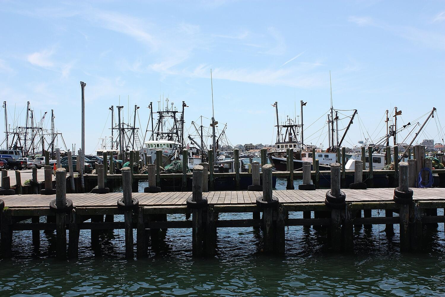 The Town Dock Joins IUU Working Group