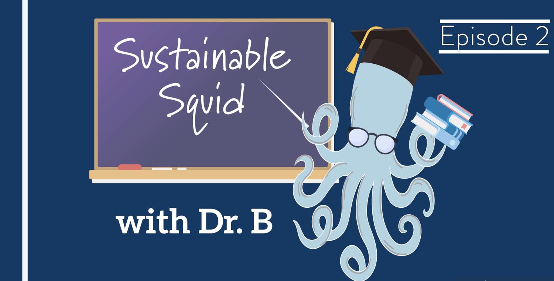 Episode 2 - Let's Talk Sustainability
