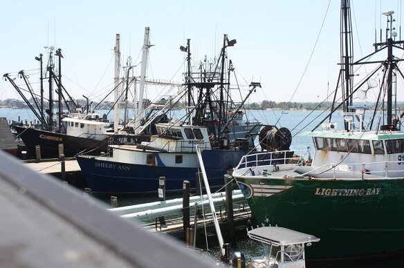 Free COVID-19 Vaccines for Commercial Fishermen & Employees in Port of Galilee