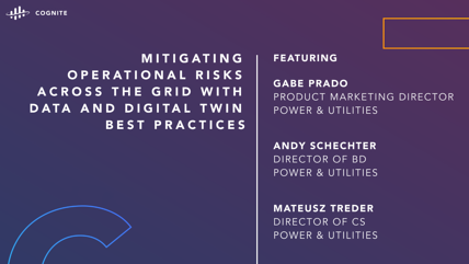 Mitigating Operational Risks Across the Grid With Data and Digital Twin Best Practices