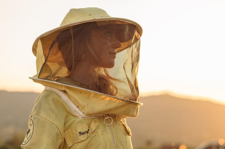 Nonprofits fighting for pollinators