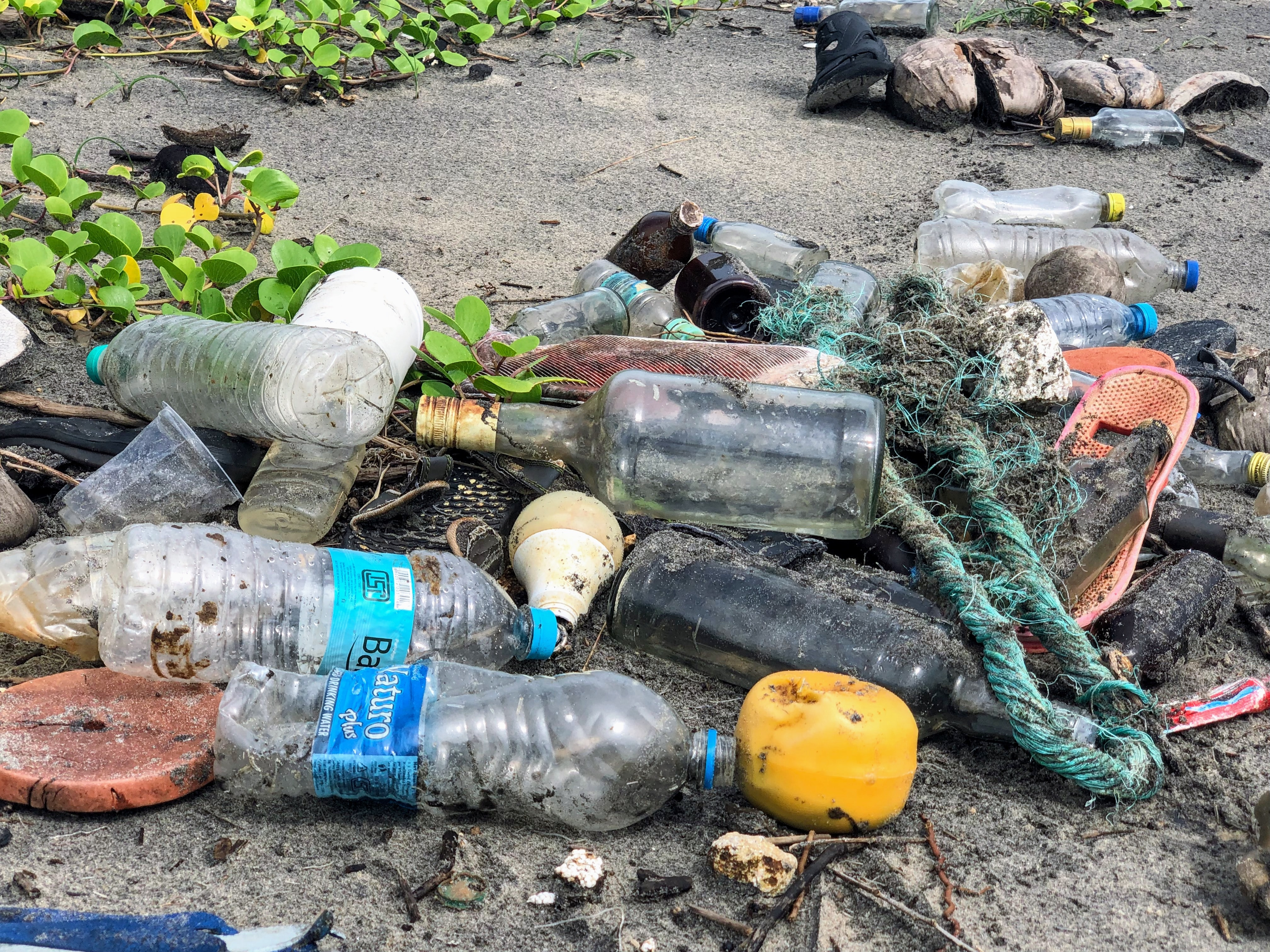 Nonprofits Fighting Plastic Pollution