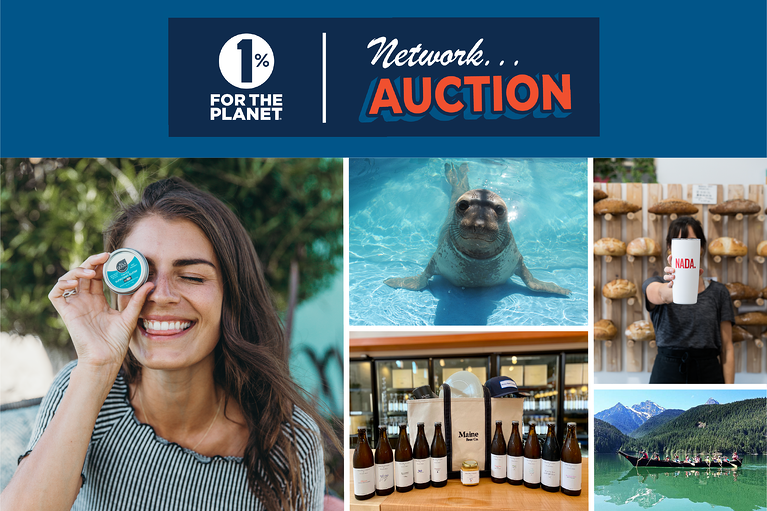 Elevate your business with B2B services from our 2020 Network Auction