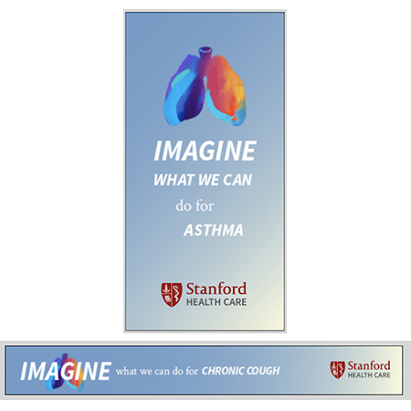 Stanford-Imagine-Ads