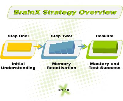 BrainX Strategy Overview