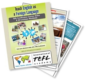english teaching brochure