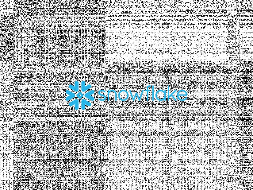 snowflake_0caae5d23f25cce532db1268b41e24b7