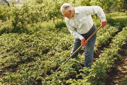 Werken na je pensioen