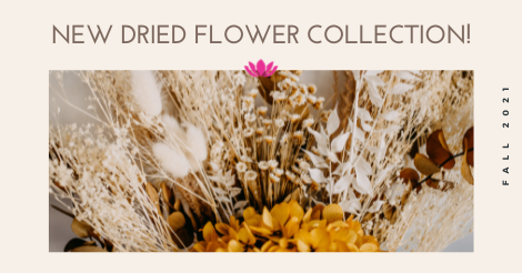 New dried flower collection available!