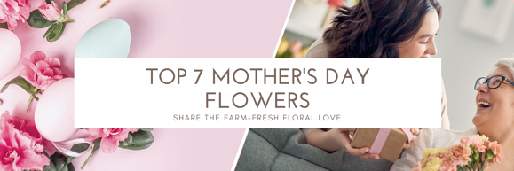 Top 7 Mother's Day Flowers