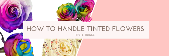 Tips & Tricks for handling tinted flowers